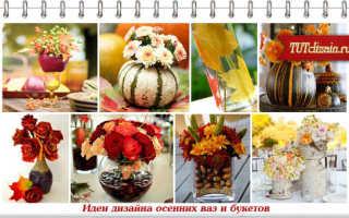 Осенние листья в вазе фото