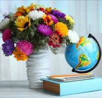 Что подарить мужчине учителю на день учителя