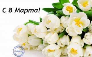 Пожелания на 8 марта женщинам