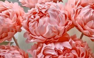 Моды для ростовых цветов купить