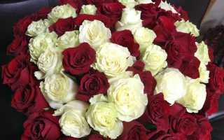 Какие цветы на 60 лет женщине
