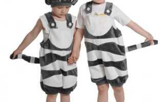 Сшить карнавальный костюм для мальчика своими руками