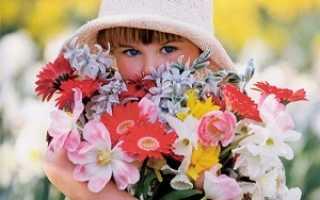 Цветы на 15 лет девочке