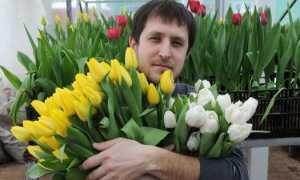 Мужчине вместо цветов на день рождения
