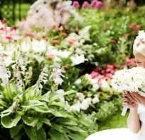 Наставление дочери от мамы на свадьбу