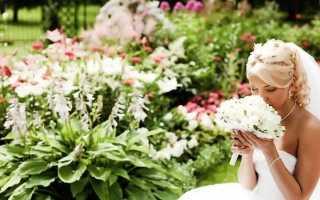 Напутствие дочери на свадьбу от мамы