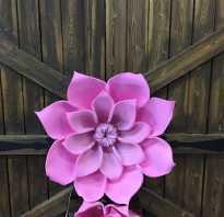Большие цветы и декорации
