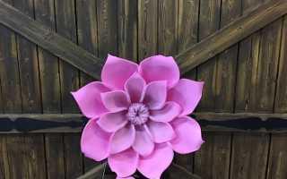 Купить большие цветы из бумаги