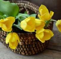 Подарить любимой девушке букет цветов